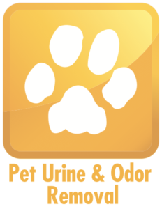 safe pet urine odor removal